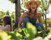 Co zasít v srpnu, abyste ještě letos mohli sklízet zeleninu?