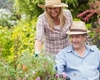 5 tipů, jak vybudovat bezbariérovou zahradu, aby se pro vozíčkáře nestala pastí