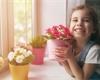 Ideální květiny do dětského pokoje. Na které dát naopak pozor, protože jsou jedovaté?