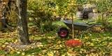 Péče o trávník na podzim: Jak na sekání, provzdušnění, hnojení, dosev a postřik?