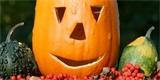 Halloween: Vyrobte si svítící strašidlo a další dekorace z dýní