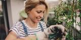 Jam čínský – světelný kořen, který léčí i omlazuje. Jak ho pěstovat?