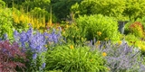 10 rostlin, které budou na zahradě krásné, i když bude sucho a dojde voda