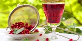 Jak připravit rybízové víno