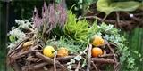 Nejkrásnější podzimní dekorace: Vše potřebné najdete v přírodě
