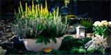Dekorace na hrob: Vyrobte si dušičkovou výzdobu