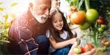 Jak se stát zahradníkem v 8 krocích: Co ještě letos vypěstuje i naprostý začátečník