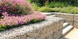 Zahrada ve svahu: Jak ji vybudovat