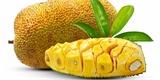 Chlebovník neboli jackfruit: Jak si pochutnat na největším ovoci světa
