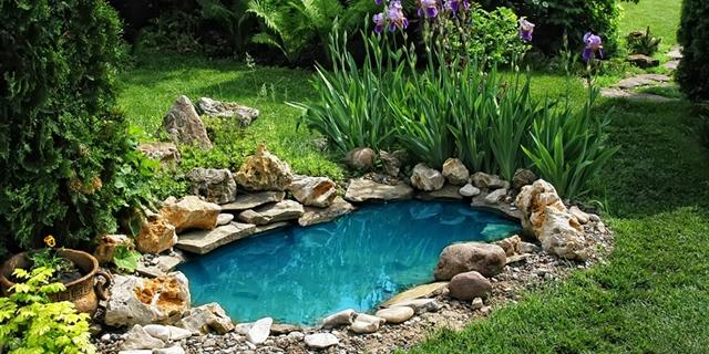 Zahradní Jezírka Koupací I Okrasná Inspirujte Se Ve