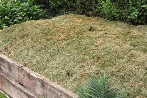 zahradní odpady 1.jpg