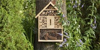 Pomozte zachránit hmyz, postavte mu na zahradě hmyzí hotel. Jak a kam ho umístit?