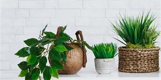 Moderní i retro květináče: Inspirujte se v galerii a vyberte si ten pravý. Kde a za kolik ho koupit?