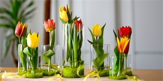 Jak si pozvat jaro domů. 50 květinových inspirací