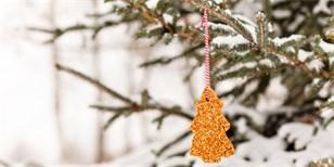Vánoční stromeček pro lesní zvířata