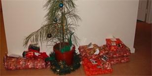 Nejošklivější vánoční stromky: Tyhle byste doma v obýváku mít nechtěli