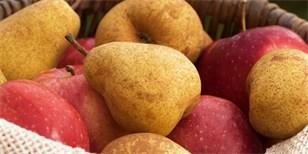 Kdy a jak sklidit jablka a hrušky. Plus tipy pro správné uskladnění