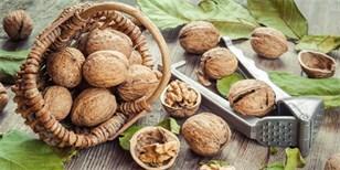 Jak skladovat vlašské ořechy ve skořápce: Vydrží vám až do další sklizně