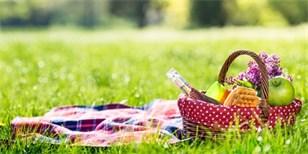 Jak na nejlepší piknik v přírodě: Inspirujte se ve fotogalerii