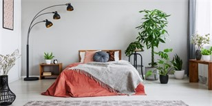 Trendy bydlení v roce 2020: In jsou dvoubarevné kuchyně, zemité barvy, samet i kov